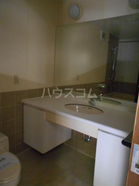 NEWTOWNHILLS 105号室の洗面所