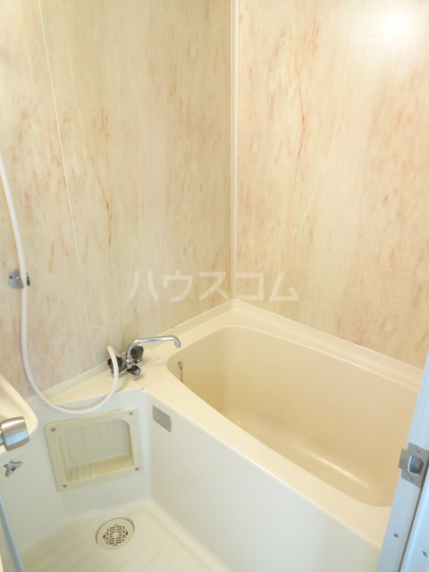 テラスベルピア 101号室の風呂