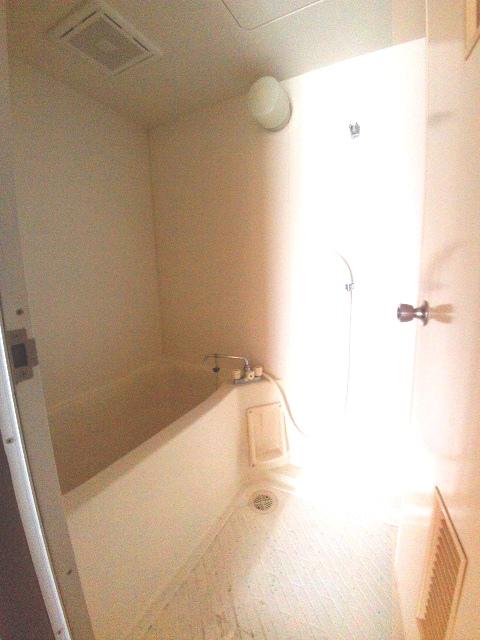 大和ハイツ A棟 205号室の風呂