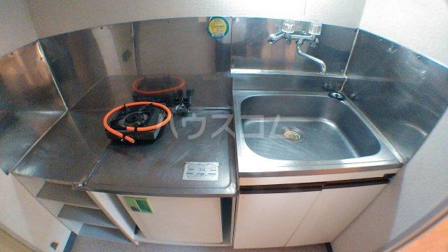 ハウスピアヤマモト 203号室のキッチン