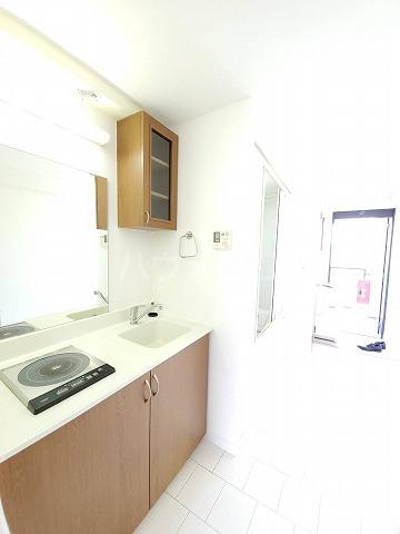 アイルーム豊田永覚Ⅱ 202号室の洗面所