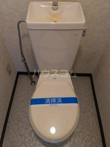 ディルーエ 301号室のトイレ