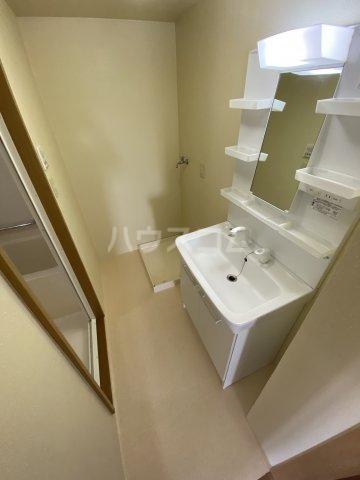 アーバン西岡崎 306号室の洗面所