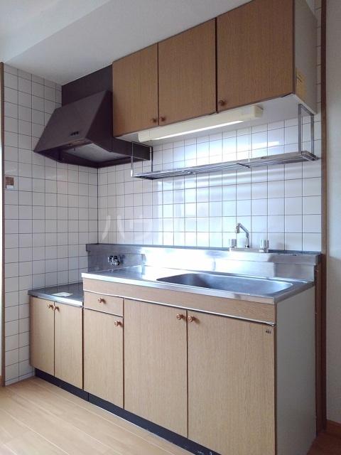 サンシティ小坂井 B 01040号室のキッチン