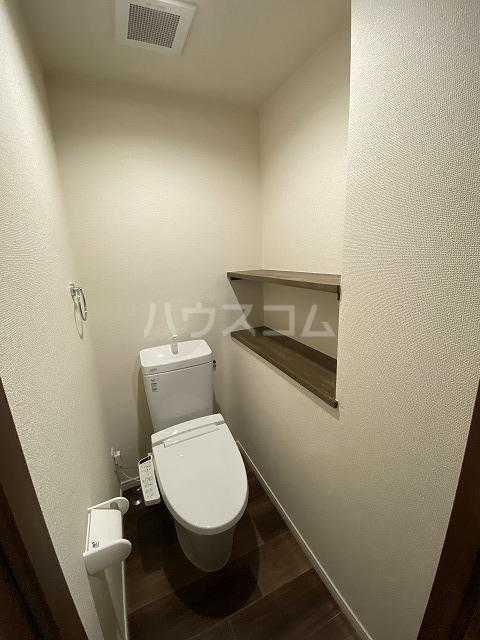 レジデンス幸田駅前 101号室のトイレ