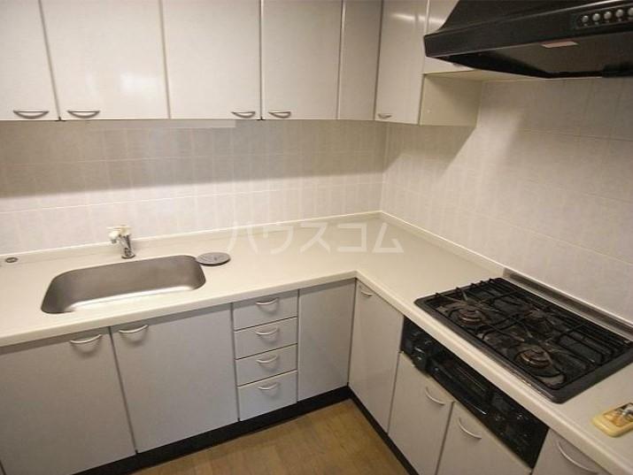 Iida Annex V 303号室のキッチン