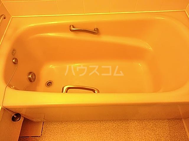 Iida Annex V 303号室の風呂