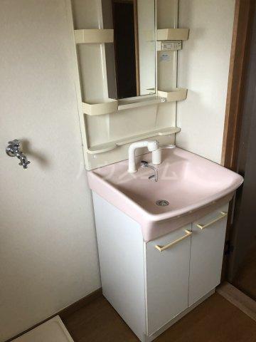 リッチモンドクロス 201号室の洗面所
