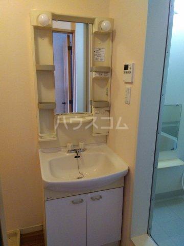 ビートルタウン パーク街 D 201号室の洗面所
