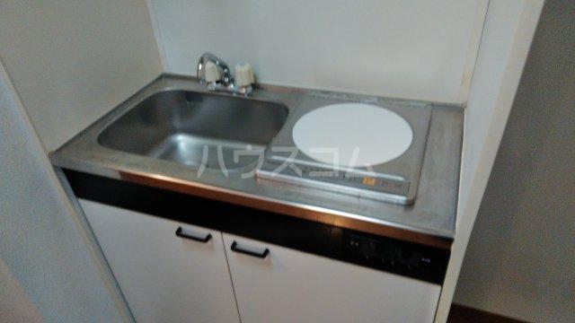 アルカディア・Ⅱ 1303号室のキッチン