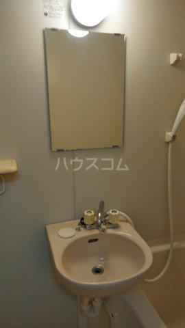 アルカディア・Ⅱ 1303号室の洗面所