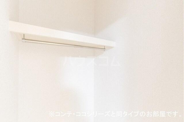 フォレスト 横須賀 01010号室の収納
