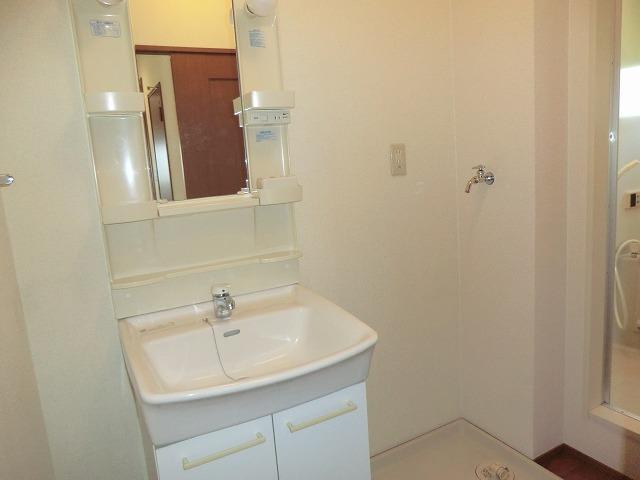 ジュネス美彩 102号室の洗面所