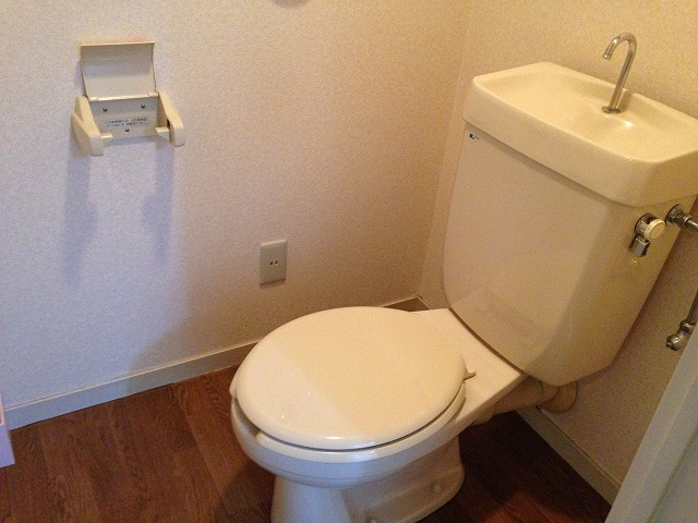 第二大嶽ビル 405号室のトイレ