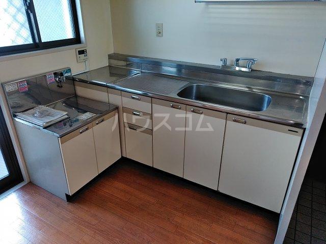 ヴィラ新磯野 201号室のキッチン