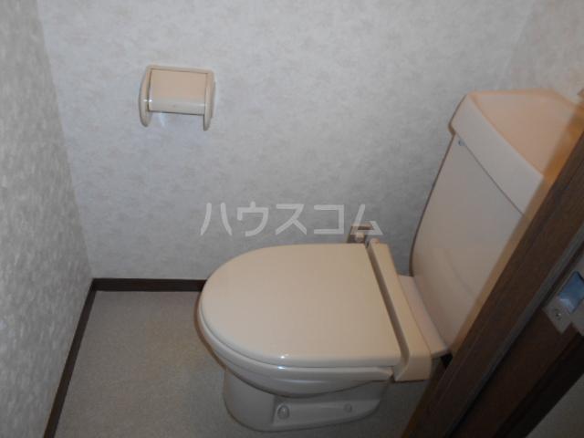 スカイヴェルデ 203号室のトイレ