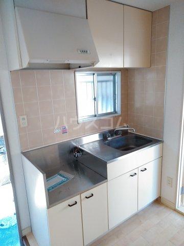 ラウレルハウス 101号室のキッチン