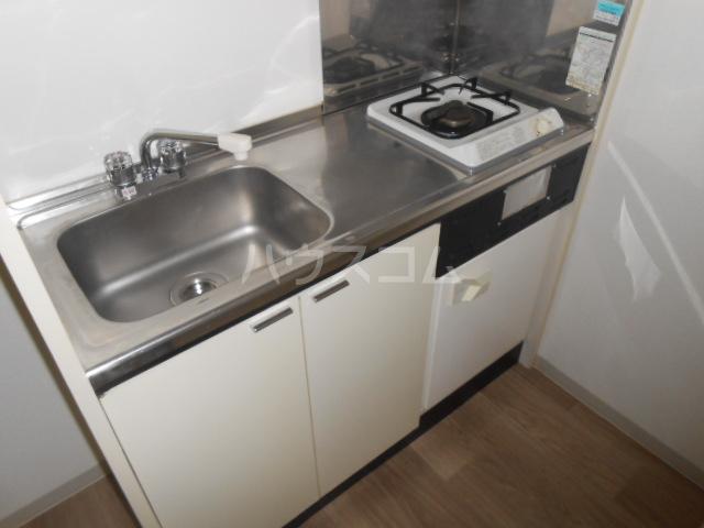 ハイツ・メイフィー 202号室のキッチン