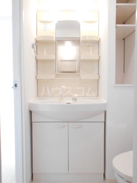 プロスペクト中央林間 204号室の洗面所