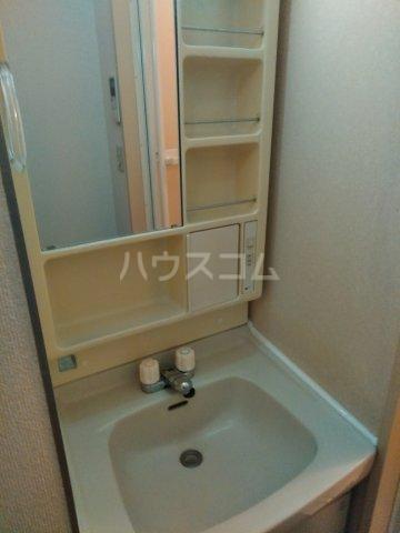 ロワール上河内Ⅱ 101号室の洗面所