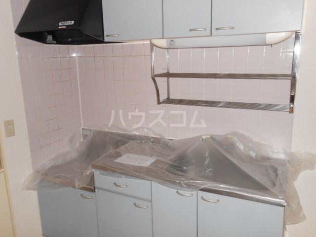 SS CERES HAITSU 202号室のキッチン