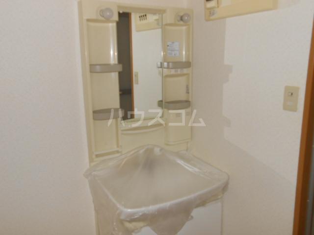 SS CERES HAITSU 202号室の洗面所