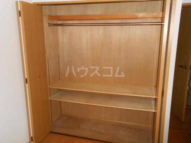 SS CERES HAITSU 202号室の収納