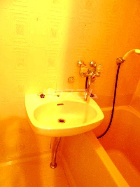 レイクナガノ 205号室の洗面所