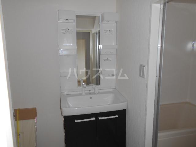カネコハイツ 202号室の洗面所