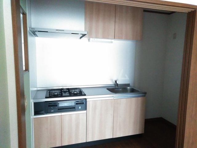 ディオ・パティオ 203号室のキッチン