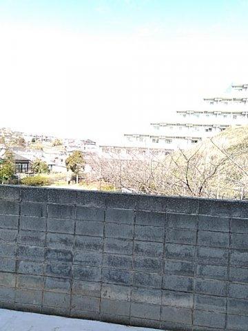 ユナイト弘明寺ヘンリーマンシーニ 205号室の景色