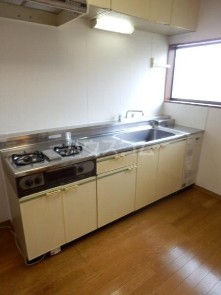 メゾン槙 101号室のキッチン