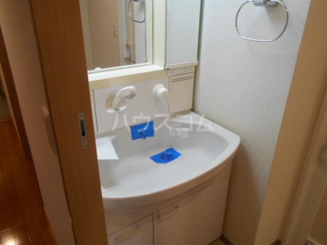 ルミエール泉 205号室の洗面所