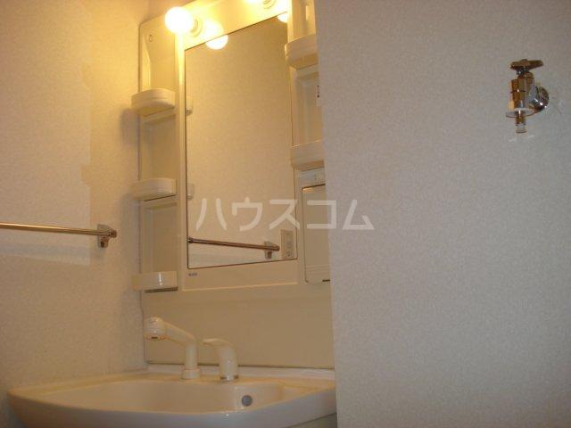 ガーデンハイツ 201号室の洗面所