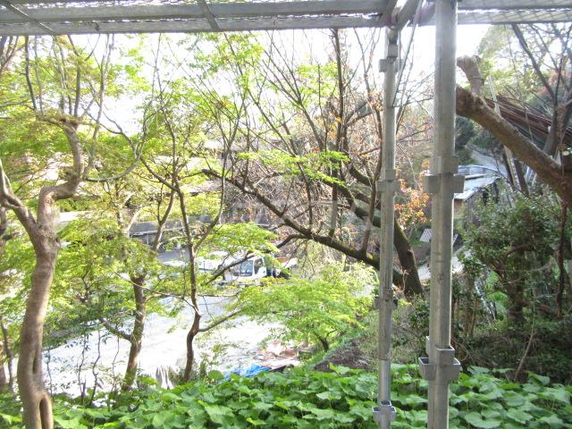 山荘村田 103号室の景色