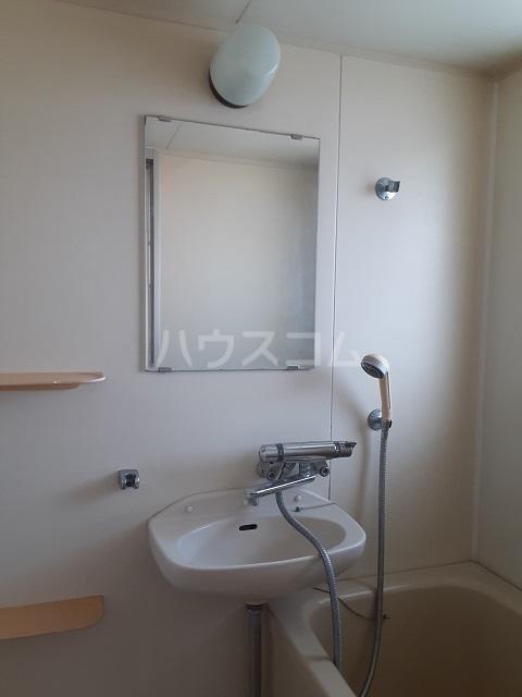 フラワーマンション 301号室の玄関