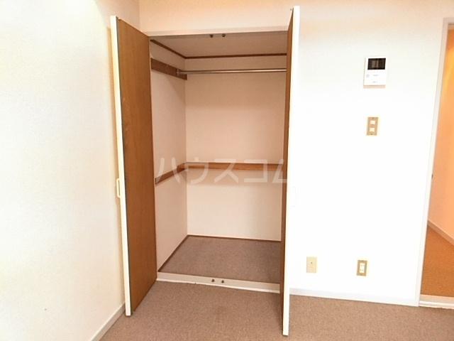 イースタンパレス桜ヶ丘 204号室の収納