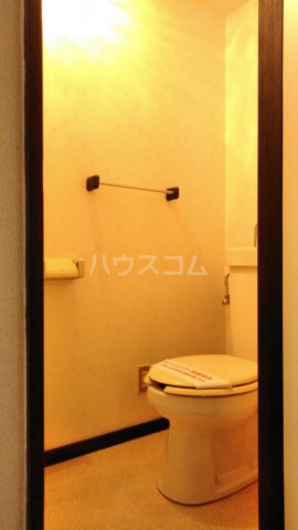 ハイツ下村 103号室のトイレ