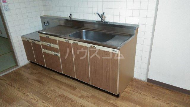 パークハイム林間 303号室のキッチン