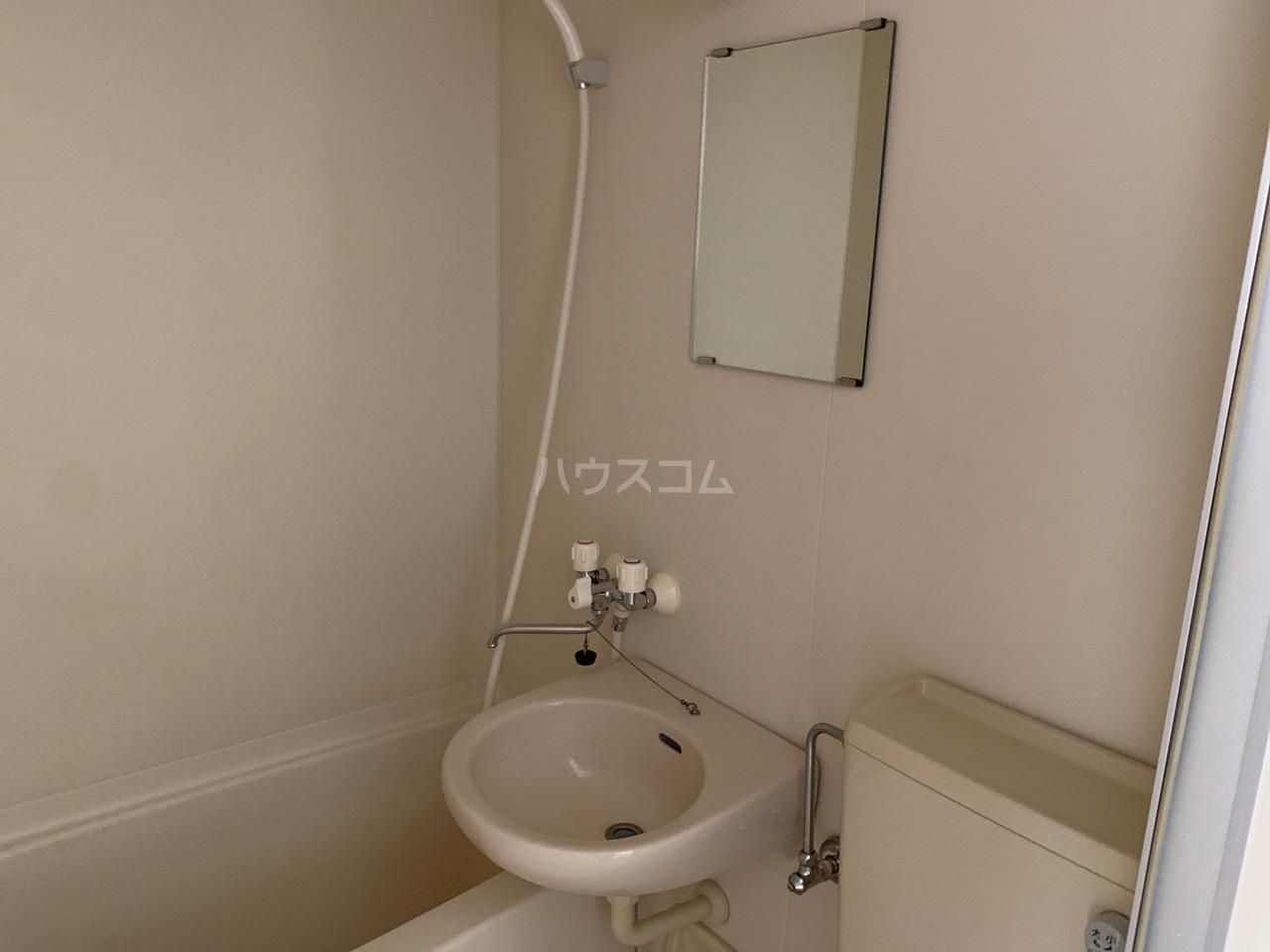 DSハウス 202号室の洗面所