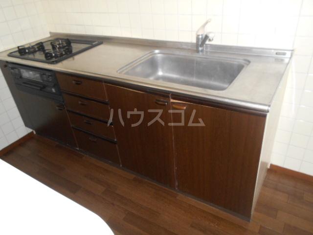 第21明智ビル 203号室のキッチン