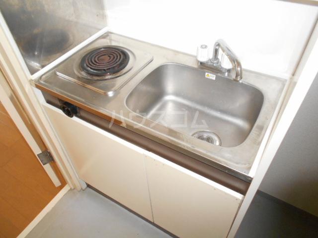 ワンルームマンション大蔵 202号室のキッチン