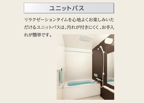 Affluent(アフルエントゥ) 206号室の風呂