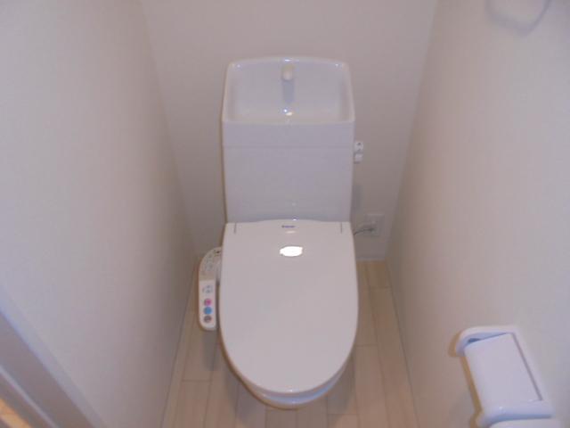 Affluent(アフルエントゥ) 206号室のトイレ