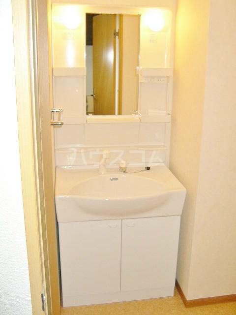 アンビシオン 202号室の洗面所
