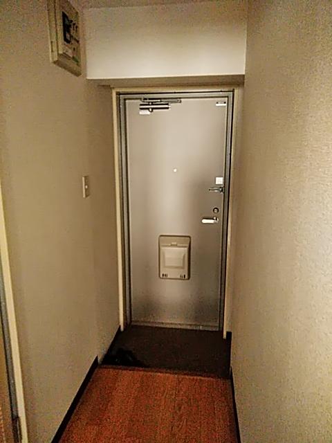 雅マンション大和 402号室の玄関