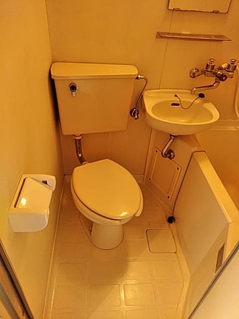 雅マンション大和 402号室のトイレ