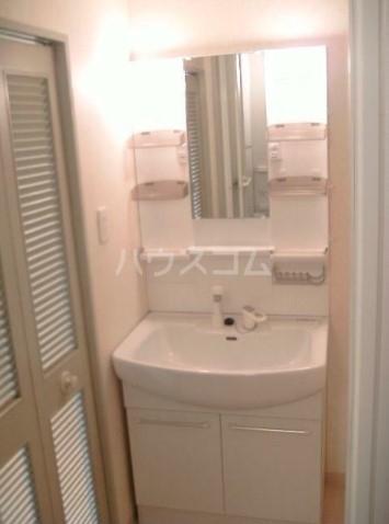 グリーンシティ新平戸 303号室の洗面所