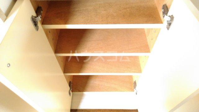 ベラ栗平 201号室の収納