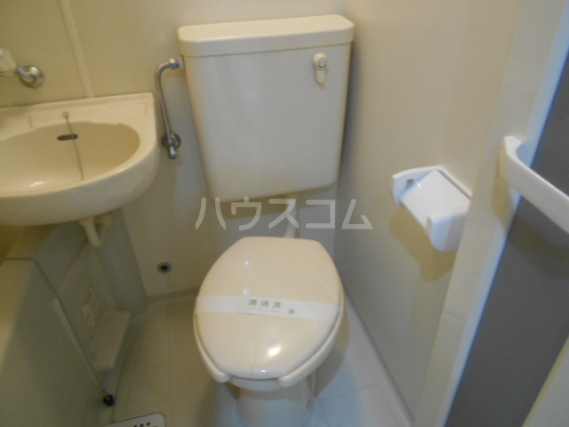 サテライトビル 201号室のトイレ
